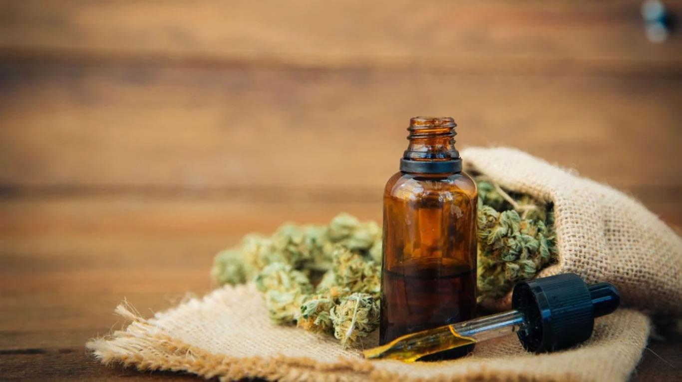 cannabis de esperanza